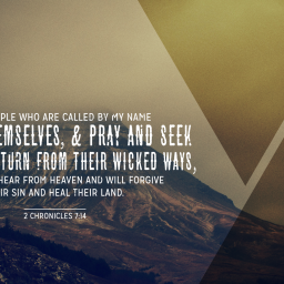 Humbly Seek God in Prayer and Turn…